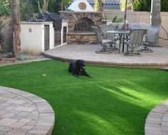 Field Turf is a great lawn substitute for dog areas.