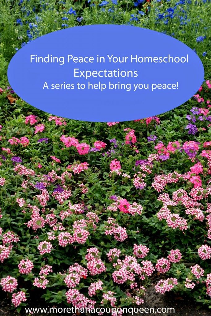 Finding Peace in Your Homeschool - Expectations - A series to help bring you peace