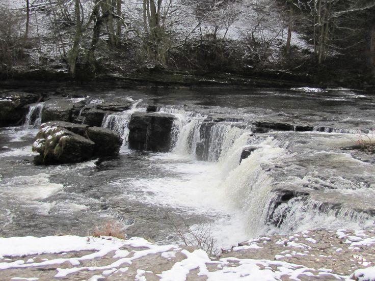 Yorkshire Dales Country Walk - West Burton to Aysgarth Falls round