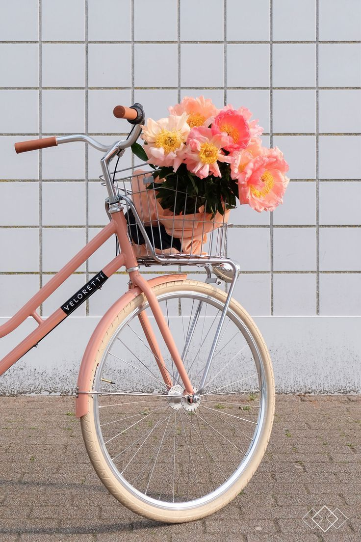 Prchtg Pioenen Pioenen Prchtg Wallpapers 4k Free Iphone Mobile Games Bicycle Pretty Bike Vintage Photography