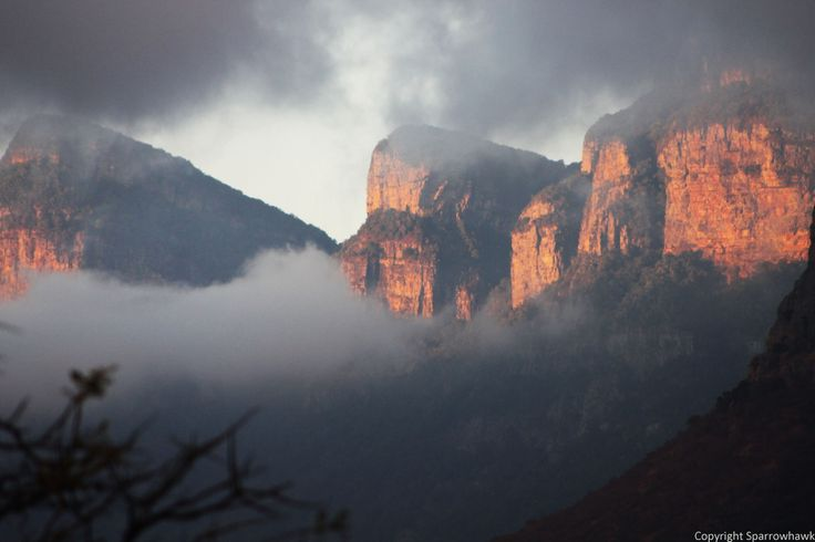Sunrise in Moholoholo