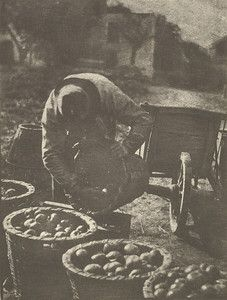 """""""Fruits of the Earth,"""" 1900, Gertrude Kasebier. University of Delaware Collection, gift of Mason E. Turner Jr, 1981. Featured in March 2013 article, """"Gertrude Kasebier: Two Exhibitions In Delaware."""""""