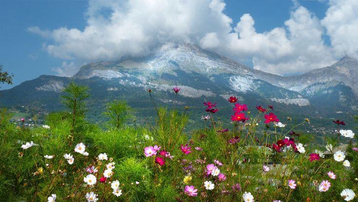 images depaysages de printemps | Télécharger photos printemps gratuitement