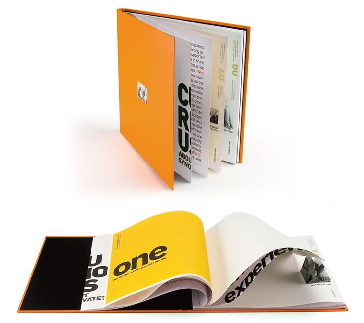 Synovate, brochure - mousegraphics.gr