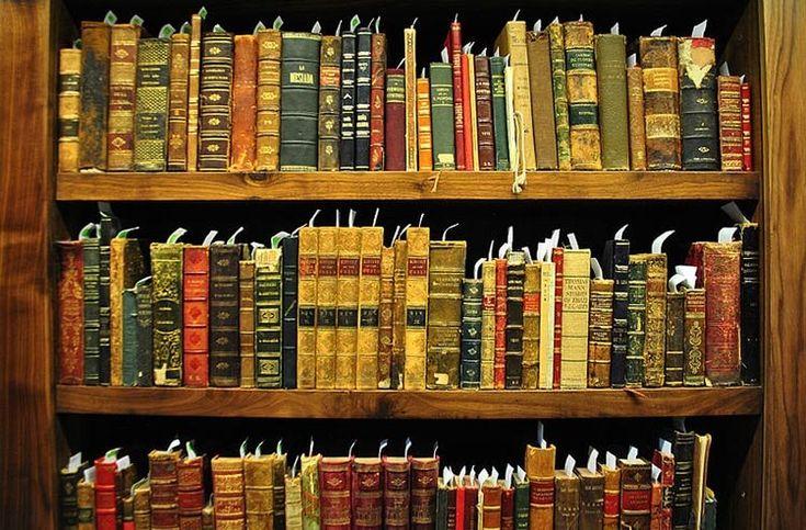 Информационная грамотность в XXI веке / Newtonew: новости сетевого образования