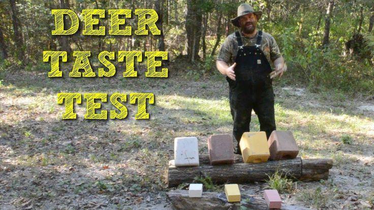 What do Deer Eat? Deer Salt Block Taste Test! on this episode of J&J Acres  #sustainable #hobbyfarm