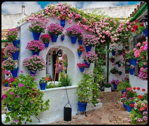 mistymorrning:    Spanish festival of colors  Cordoba Patios de Cordoba