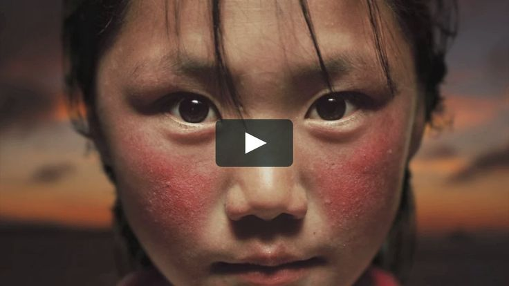 This is a montage of 2.5D animations created for AD Hoc Films http://www.adhocfilms.com/projects/wwf-uk/ By manipulating still photos we created these stunning…