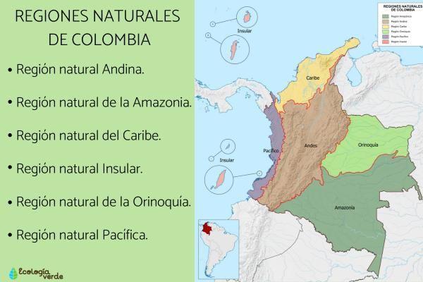 6 Regiones Naturales De Colombia Mapa Caracteristicas Y Resumen Con Fotos En 2020 Ecosistemas Colombia Regiones