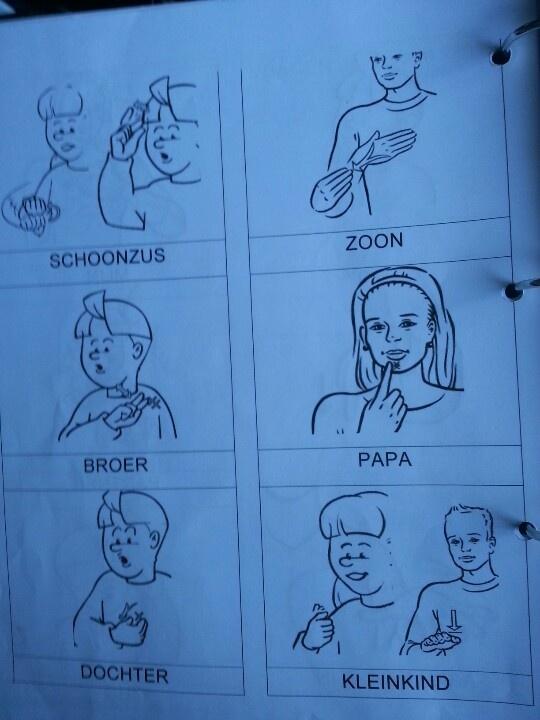 Nederlandse gebarentaal