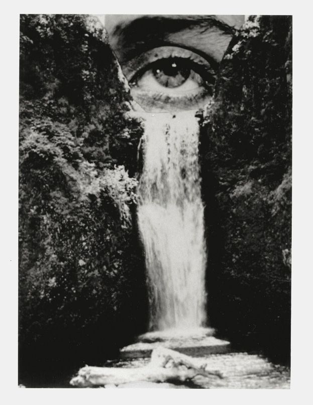 "Flood of tears (Brian Oldham.) Reminds me of the song ""Cry Me a River."" I would love to see this photomontage in color because I feel like the detail of the water and trees gets lost in it being in black and white."