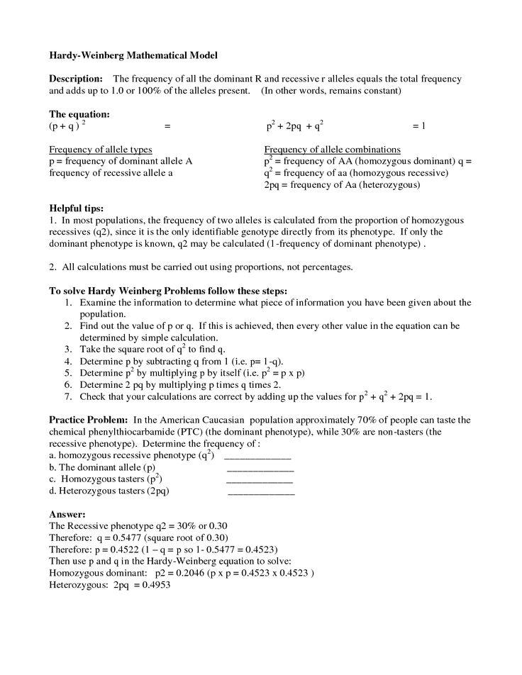 Population Genetics Worksheet Practices Worksheets Dna Lesson Transcription And Translation