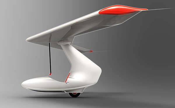 Budget-Efficient Foam Gliders - This Glider Design by Alexander Shevchenko Costs Less to Repair (GALLERY)