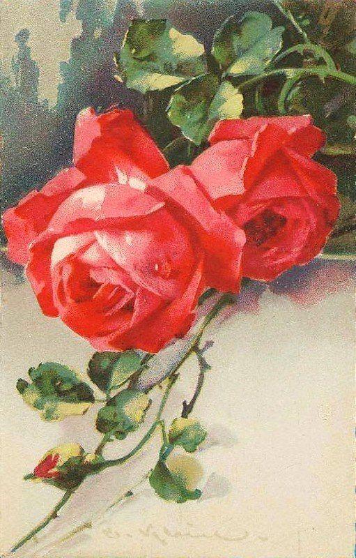 Розы живопись открытки