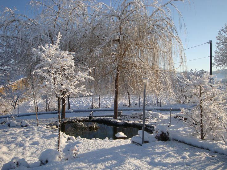Microlago - Inverno