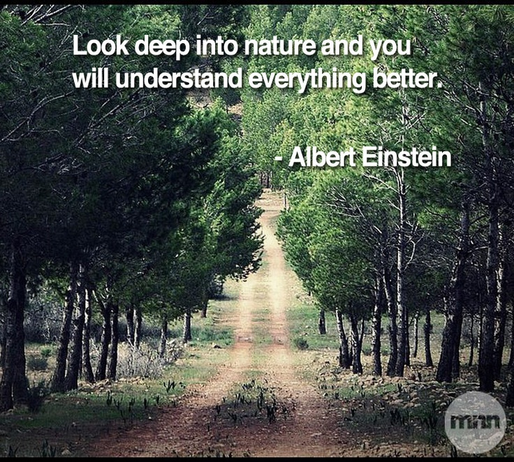 Beau Best Quotes About Mother Nature Quote 2017