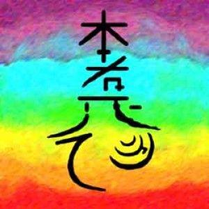 Použij Hon-Sha-Ze-Sho-Nen, pokud chceš poslat někomu energii na dálku. Aktivuj symbol, zesil ho pomocí Cho-Ku-Rei (případně přidej Sei-He-Ki), vyslov jméno toho, koho chceš léčit a představuj si, jak posíláš z rukou Reiki dané osobě.