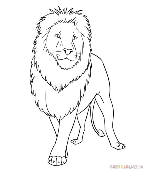 How to draw a cartoon lion step by step. Drawing tutorials for kids and beginners.