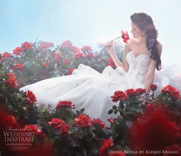 Belle by Alfred Angelo 2012 Princess Bridal Gown Collection. I wish I could see more of the gown.