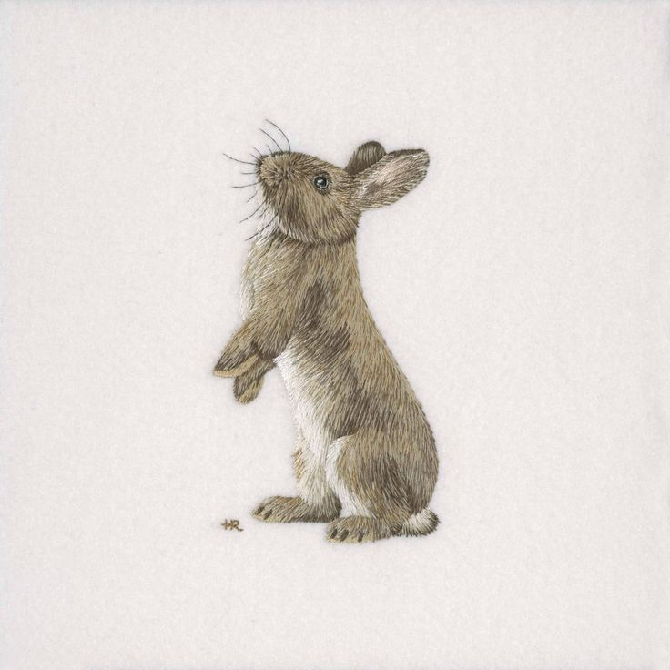 Original hand embroidery of a Rabbit as part of my 'British WIldlife' collection. The piece took approximately 40 hours to complete using a blend of ten shades