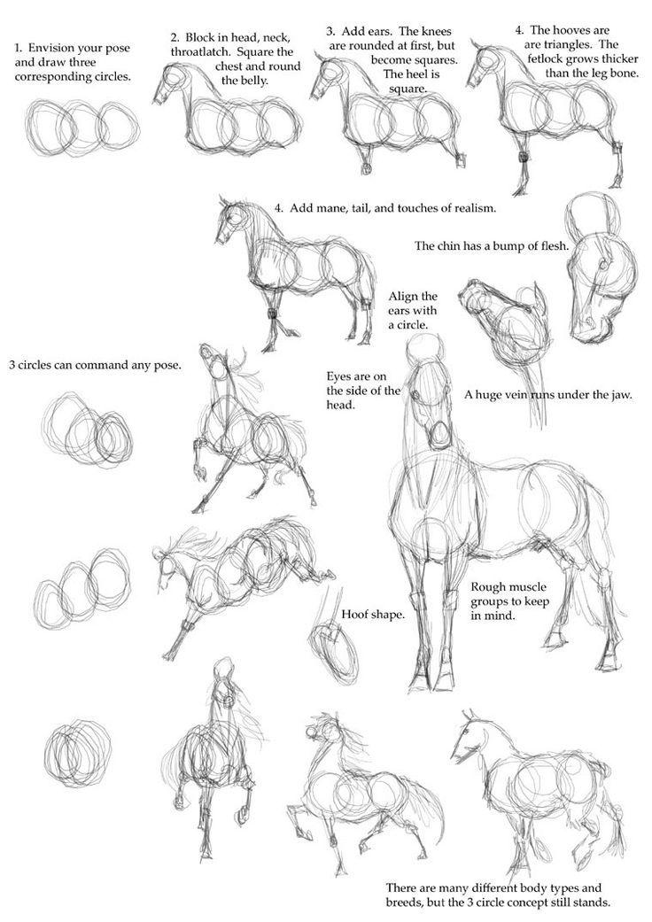 25 schöne Tierzeichnungen für Ihre Inspiration – So zeichnen Sie Tiere | Lesen Sie f …,  #inspiration #lesen #schone #tiere #tie
