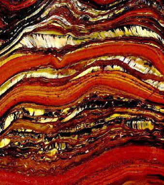 Stromatolite var. Tiger Iron (hematite, red jasper, and tigereye)