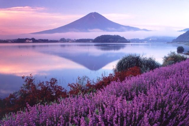 5 Best Spot View Mount Fuji - Novel Travel list