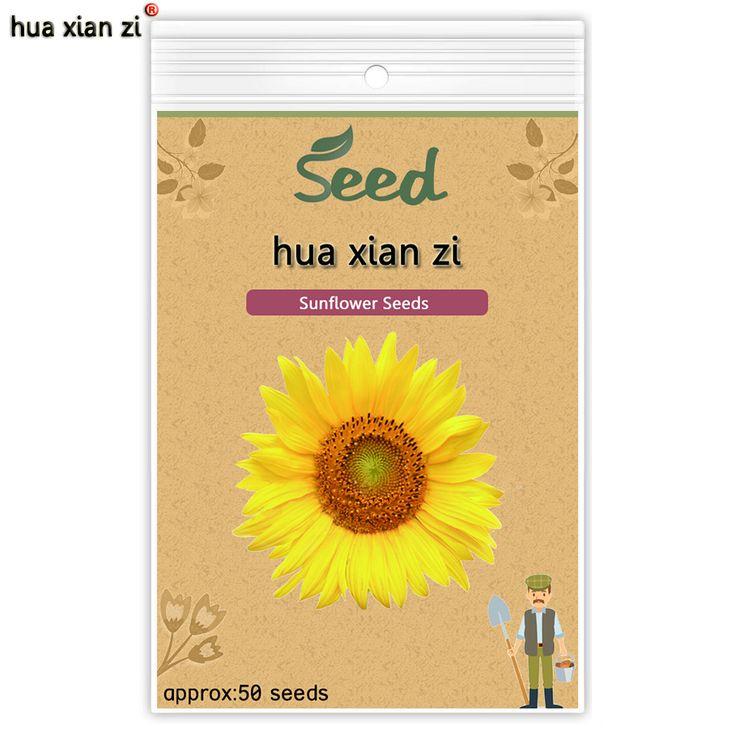 ZI HUA XIAN Słonecznika Nasiona Kwiatów Nasiona Bonsai Nasion Słonecznika Przyrost Naturalny dla Domu Ogród Sadzenia 50 nasiona/torba