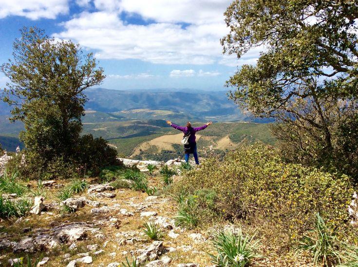 Alla scoperta del Montalbo attraverso un trekking spettacolare La Sardegna è ricca di luoghi bellissimi da esplorare, tutti…