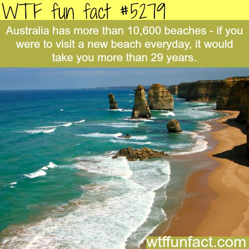 """Australia has more beaches than you can visit - & the Biggest """"Variety of Killer  Wildlife!""""... ~WTF? """"fun facts"""""""