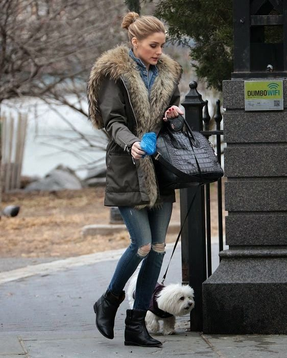 Olivia Palermo in a denim shirt underneath an oversized fur-trimmed parka  jacket teamed with distressed skinny jeans, black ankle boots and a  Givenchy bag.