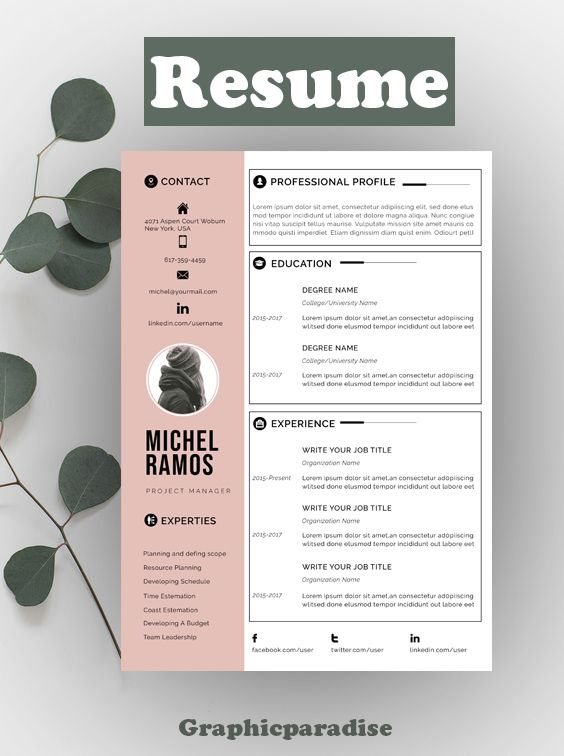 Modern Resume Template Microsoft Word Free Resume Template