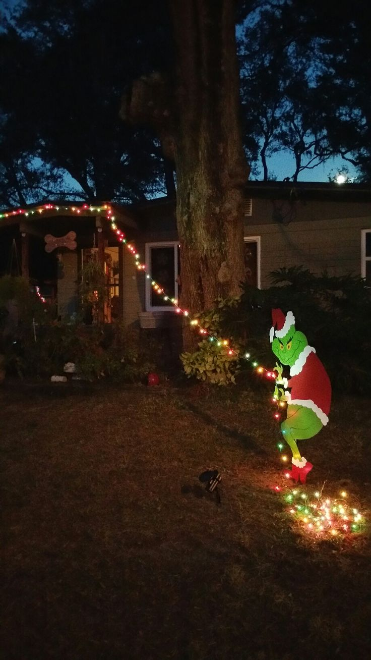 This past year we worked on Pinterest inspired Grinch ...