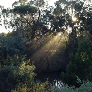 Capital City Trail | 21 Melbourne Walks That Will Take Your Breath Away
