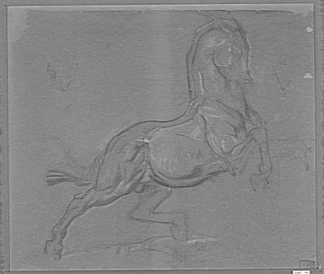 """Etude de cheval pour le tableau """"Diomède dévoré par ses chevaux""""  Moreau Gustave (1826-1898)  Paris, musée Gustave Moreau"""