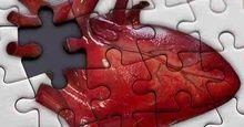 Група вчених з Китаю і США створила штучні стовбурові клітини тканин серця.   Про це йде...