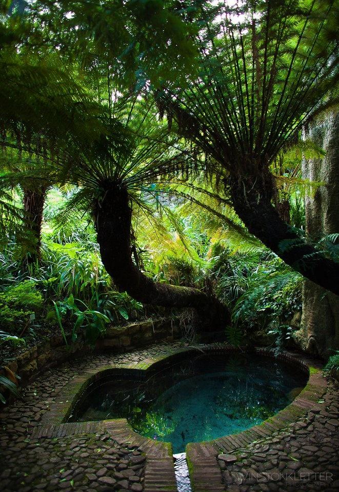 Lady Anne Barnard's Bath = Bath and Dell at Kirstenbosch Gardens