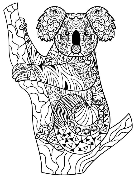 Koala zentangle Animal Coloring Pages for Adults Love