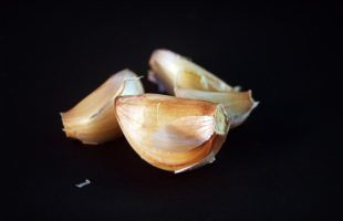 DIY Garlic oil ointment for Pneumonia, Coughs, Colds, Ear Infections and more