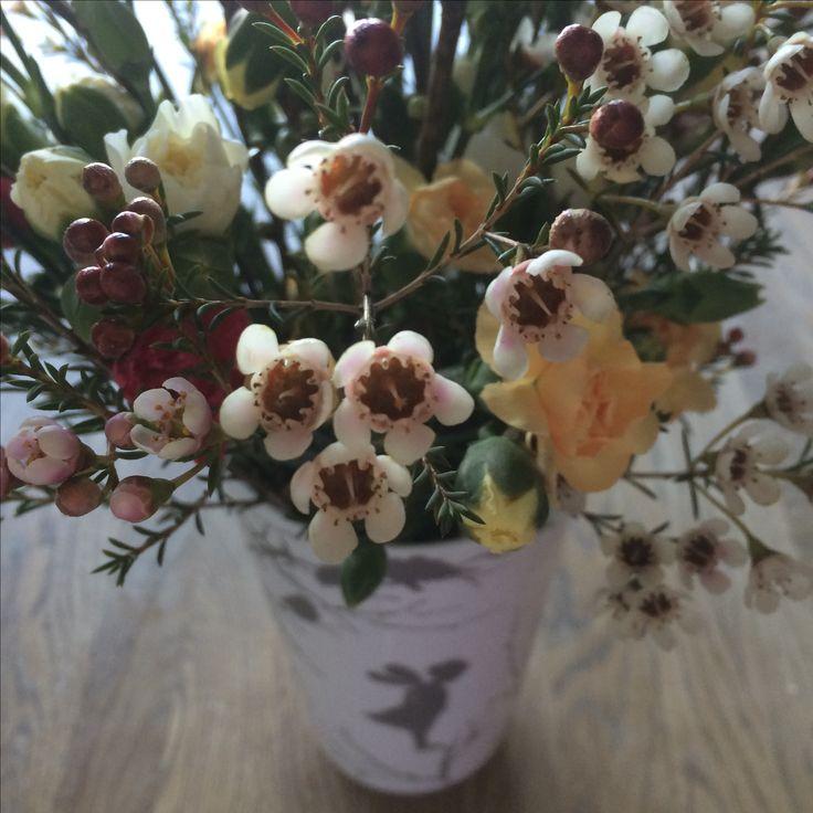 Vårbukett: voksblomster, grennelliker i div farger og grener av kirsebærblomst.