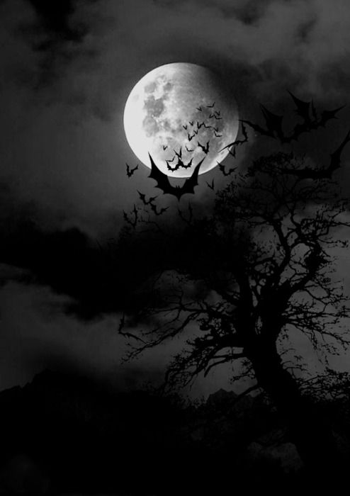 Witches cackles fill the night Black caldron by a firelight Ghost and Goblins all through the dark Scary, spooky trees with faces in the bark Bats against a moonlit sky Zombies who refuse to die Vampires stalking their prey Wishing this night would turn to day