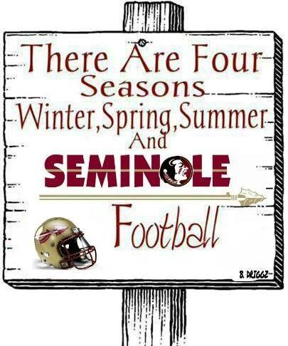 FSU Seminoles ~ Football Season
