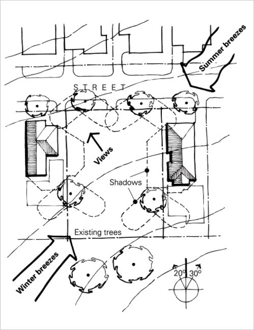 A site plan showing existing trees on a block, with the shadows they cast marked, and arrows showing the direction of winter and summer breezes.