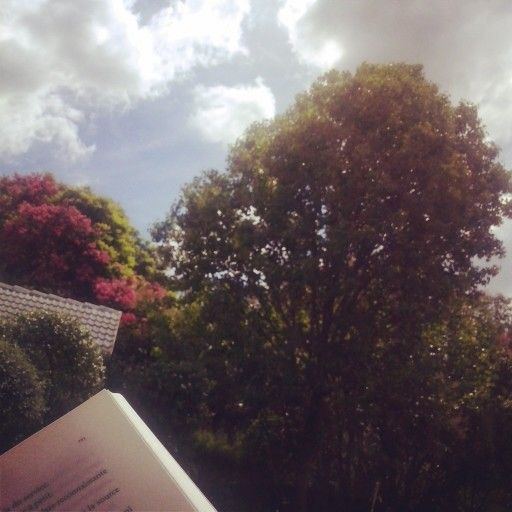 Reading underneath the sun, with the wind - the beauty of simplicity  South Africa
