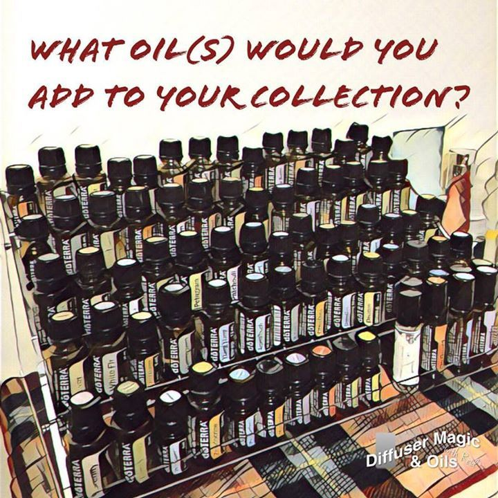 What oil or oils do you want to add to your collection? # . . . #essentialoils #에센셜오일 #happy #행복 #도테라코리아 #doterra #aroma #향 #향기 #wellness #naturalliving #diffusermagic #diffuserblend #natural #diffusing #아로마디퓨저 #diffuser #health #healthy #rest #헬스 #헬스타그램 #collector
