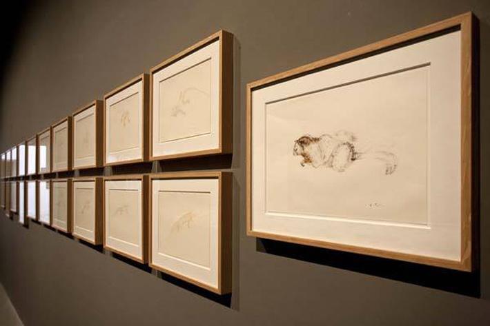 #Venice #Biennale 2013   My Design Agenda