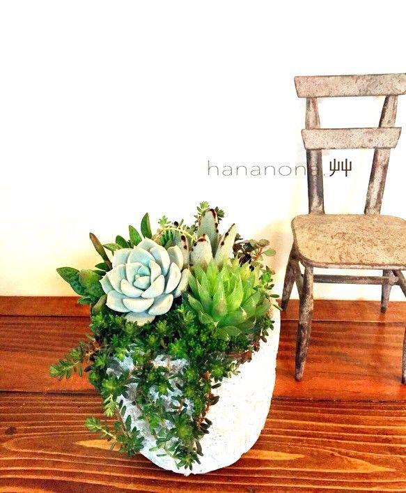 アラベスク柄のポットに多肉植物を寄せ植えにしました。水晶のようなハオルチアと月兎耳、白牡丹に、枝垂れるセダム、コーラルカーペットとピンクのお花が咲くクーペリを...|ハンドメイド、手作り、手仕事品の通販・販売・購入ならCreema。