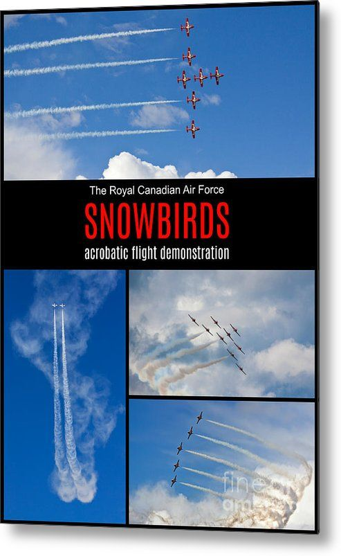 Snowbirds Collage 2 Metal Print  by Tatiana Travelways. The snowbirds performing an acrobatic flight demonstration in Ottawa. Also available as: canvas print, framed print, poster, metal print, acrylic print, wood print, greeting card and more... #Snowbirds