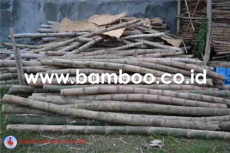 Bamboo Pole - 02