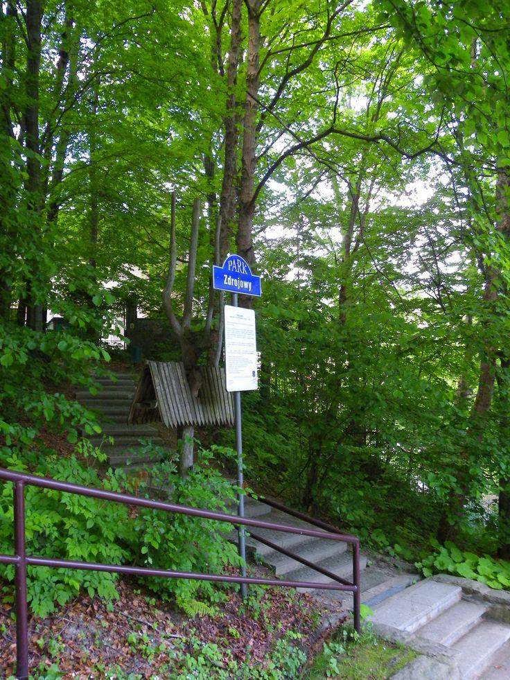 Krynica Zdrój.Góra Parkowa.Szlak pieszy